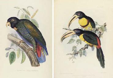 FRASER, Louis (fl.1840-1860).