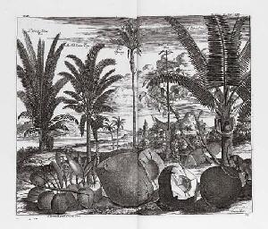 AWNSHAM (d. 1728) and JOHN CHU