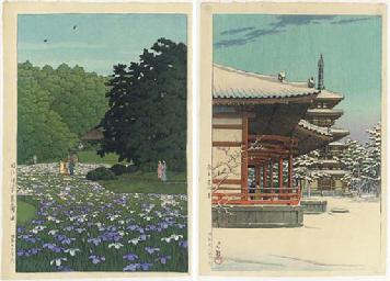Meiji jingu shobuden (Iris fie