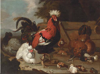 A rooster, hens and chicks in