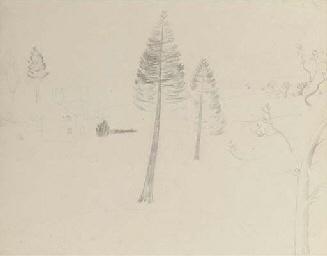 Sketch for Walton Wood Cottage