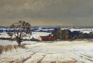 Snow in Waverley Valley
