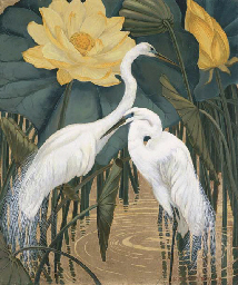 Egrets and Lotus