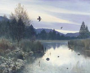 Loch an Eilein - Woodcock