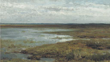 Wetland at dusk