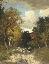 Autumn: leading the sheep thro