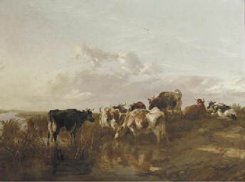 Cattle in the marshes