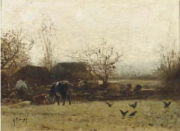 Cows grazing near a farm