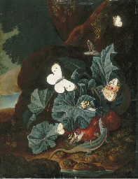 A forest floor still-life with