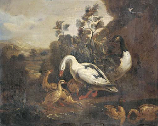 Ducks and a goose in a landsca