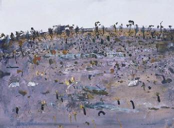After the Fire, Flinders Islan