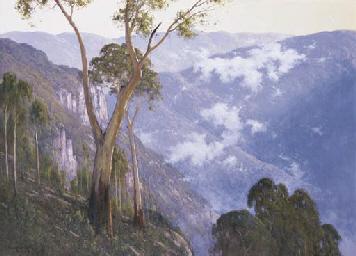 Lifting Fog, Belmore Gorge, Ne