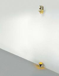 Titanus Yellow
