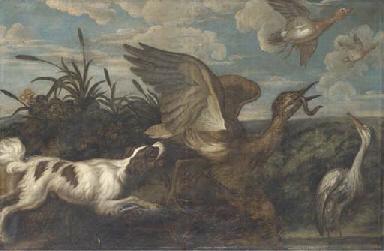 A spaniel chasing a bittern, w