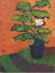 Stilleven plant tegen oranje