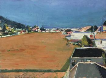 Marin Landscape