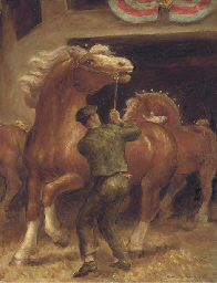 Belgian Stallions