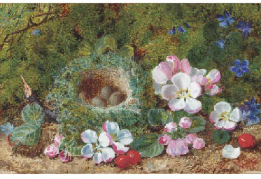Apple blossom, berries and a b