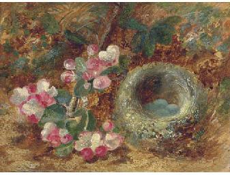 Apple blossom and a bird's nes