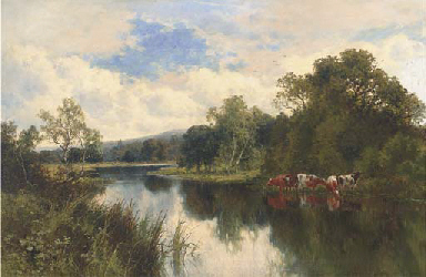Cattle watering on a summer's