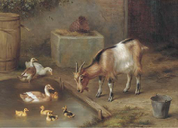 The duck pond; and Chickens in