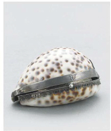 A SILVER-MOUNTED COWRIE SHELL