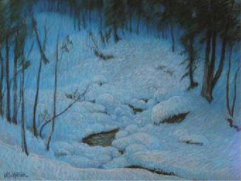 Deep Woods after Snowfall