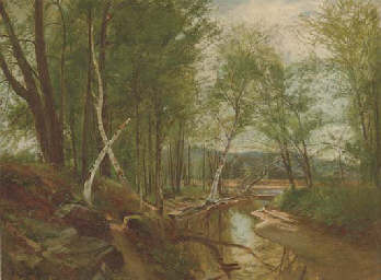 Birch Trees Along a Tributary