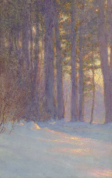 Woods in Snow at Dusk