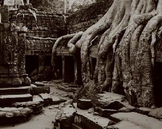 Passages, Ta Phrom, 2001