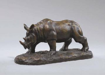 Rhinocéros marchant