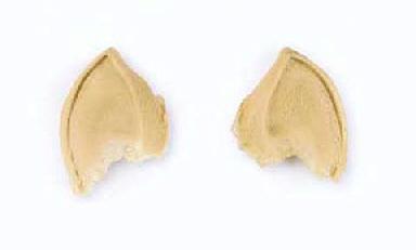 VULCAN POINTED EARS