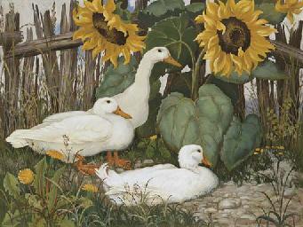 Ducks and Sunflower