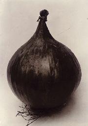 Onion Ailsa Craig, c.1900