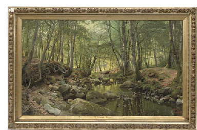 A stream in a tranquil wooded