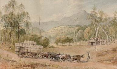 Bringing the wool down, Mount