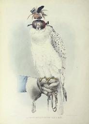 SCHLEGEL, Herman (1804-1884) and Abraham Henrik Verster DE WULVERHORST (1796-1882). Traité de Fauconnerie. Leiden and Düsseldorf: Arnz & Comp., '1844' [?1845]-1853.