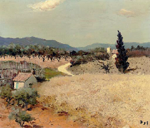 Champ de blé en Provence
