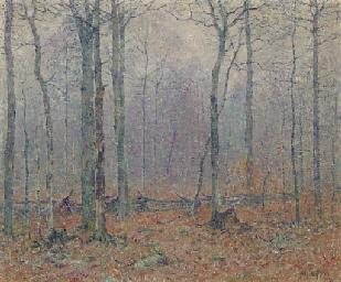 Thru December Woods