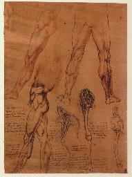 LEONARDO DA VINCI (1452-1519). Quaderni d'anatomia, I-VI: Fogli della Royal Library di Windsor, pubblicati da C.L. Vangensten, A. Fonahn, H. Hopstock. Christiana: J. Dybwad, 1911-1916.