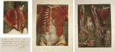GAUTIER D'AGOTY, Jacques (1717-1786) and Joseph Guichard DUVERNEY. Essai d'Anatomie, en Tableaux imprimés, qui represent au naturel tous les muscles de la face, du col, de la tête, de la langue & du larynx... -- Myologie complette en couleur et grandeur naturelle, compose de l'essai et de la suite de l'essai d'anatomie, en tableaux imprimes. Paris: Gautier [vol. I]; Gautier, Quillau pre et fils, and Lamesle [vol. II], 1745-46-[48].