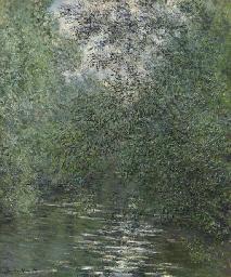 Le fleuve aux saules