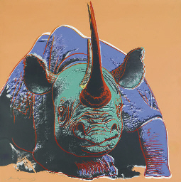 Black Rhinoceros, from Endange