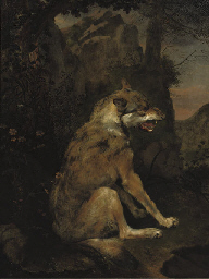 A wolf in a rocky landscape