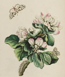 WILKES, Benjamin (fl.1740-1750