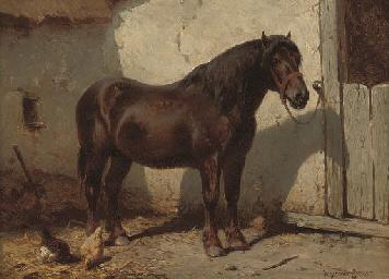 A favourite pony