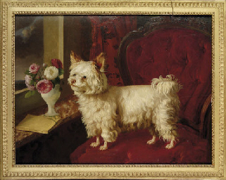 A dog on a red velvet fauteuil
