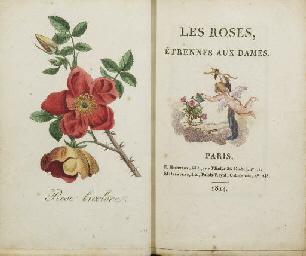 [ALMANACH]. Les Roses, Étrenne