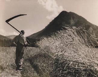 Der Ernte entgegen, 1943