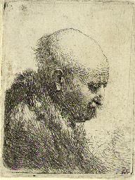 A bald-headed Man in Profile r